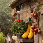 3073 -Solaris Dalmatian Ethno Village _autumn_detail
