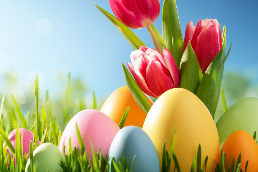 Web-slider-Easter-&-Labour-NOVO-05